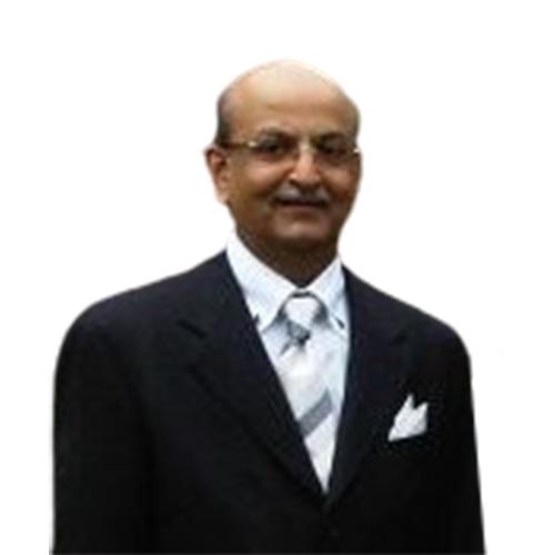 Classic Carpet - Prakash Narwani